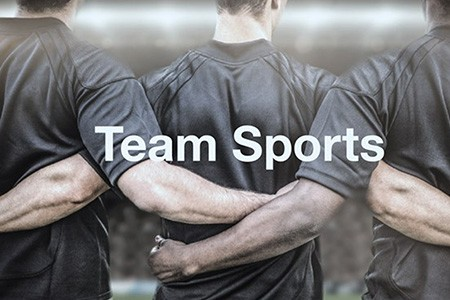 Team Sports market insights